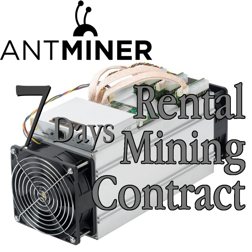 Antminer L3 Rental Contract - Cuban Hacker